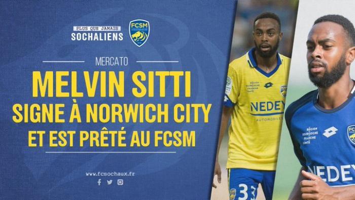 Melvin Sitti