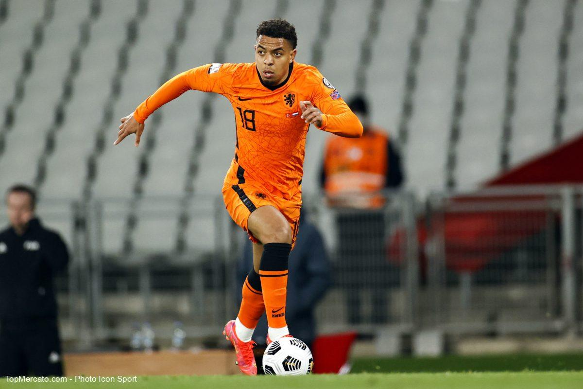 Donyell Malen, Pays-Bas