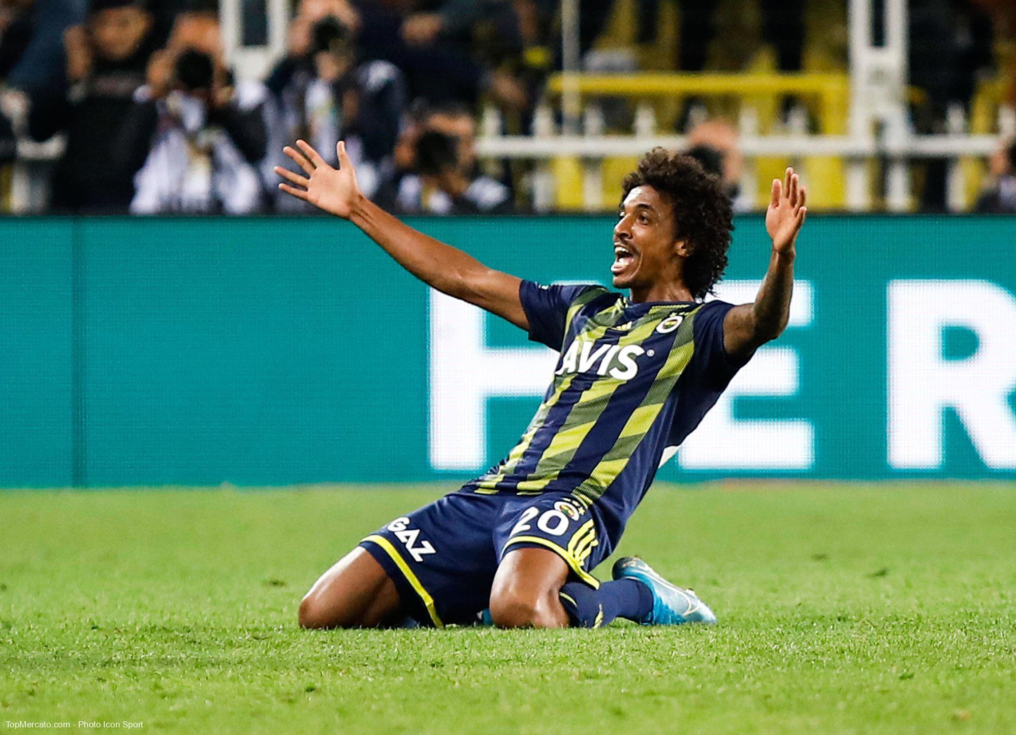 Luiz Gustavo, Fenerbahçe